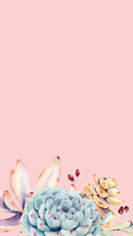 pink-succ