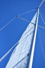 sailing-11