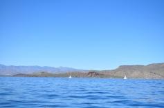 sailing-19